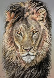Golden Gaze by Darryn Eggleton -  sized 20x28 inches. Available from Whitewall Galleries